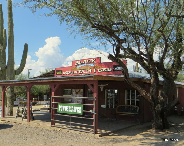 Feed Store Cave Creek