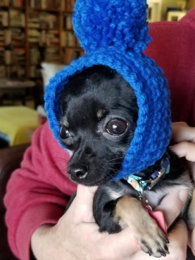 rudy in hat 122418